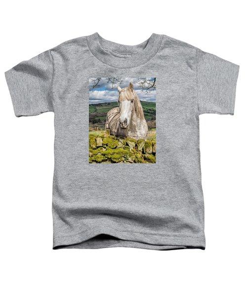 Rustic Horse Toddler T-Shirt