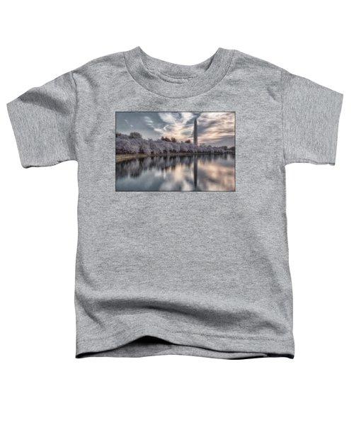 Washington Sunrise Toddler T-Shirt