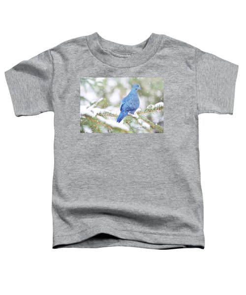Winter Birds Toddler T-Shirt