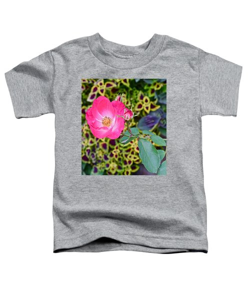 2015 Fall Equinox At The Garden Hello Fall Toddler T-Shirt