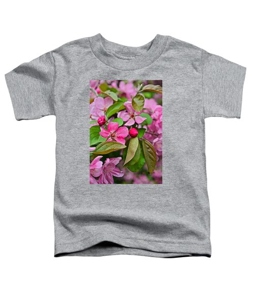 2015 Spring At The Gardens Pink Crabapple Blossoms 2 Toddler T-Shirt