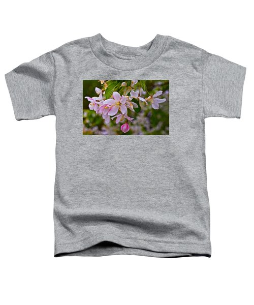 2015 Spring At The Gardens White Crabapple Blossoms 1 Toddler T-Shirt