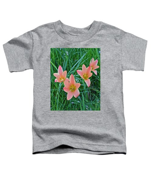 2015 Spring At The Gardens Meadow Garden Tulips 3 Toddler T-Shirt