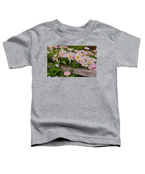 2015 Summer's Eve Neighborhood Garden Front Yard Peonies 3 Toddler T-Shirt