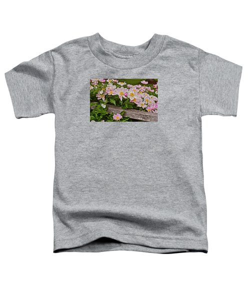 2015 Summer's Eve Neighborhood Garden Front Yard Peonies 3 Toddler T-Shirt