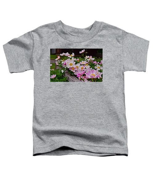 2015 Summer's Eve Neighborhood Garden Front Yard Peonies 4 Toddler T-Shirt