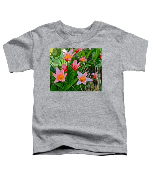2016 Acewood Tulips 2 Toddler T-Shirt