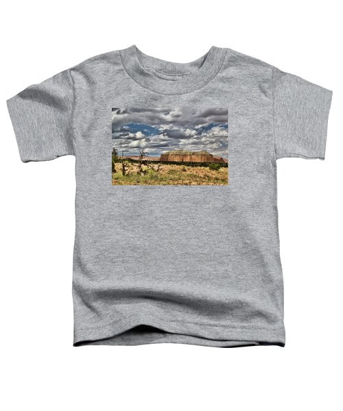 Capitol Reef National Park Catherdal Valley Toddler T-Shirt