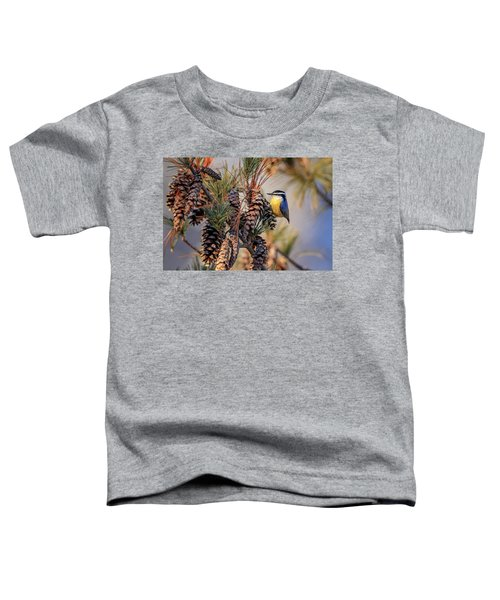 Black-capped Chickadee Toddler T-Shirt