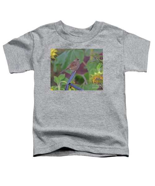 Golden-crowned Sparrow Toddler T-Shirt