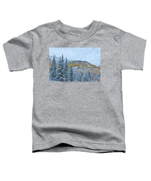 Colorado Fall Foliage 2 Toddler T-Shirt