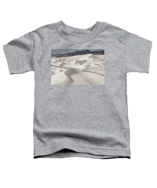 Dumont Dunes 5 Toddler T-Shirt