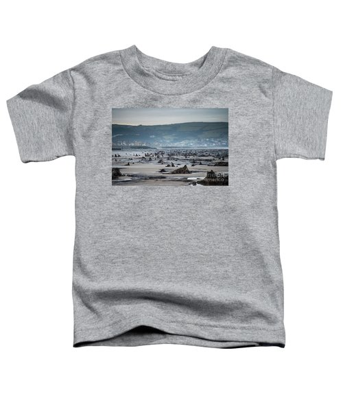 Bronze Age Sunken Forest At Borth On The West Wales Coast Uk Toddler T-Shirt