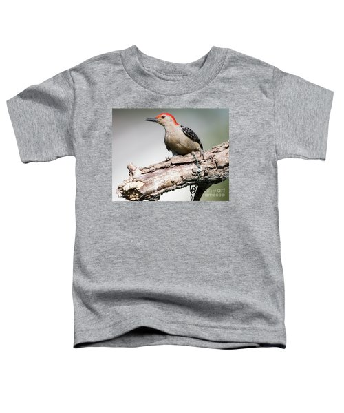 Red-bellied Woodpecker Toddler T-Shirt