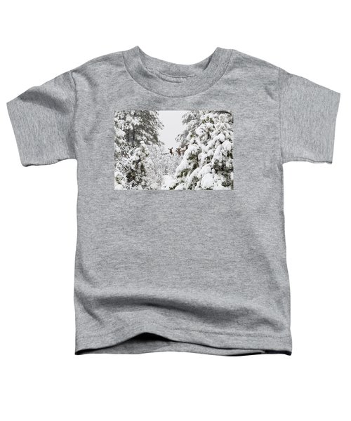 Elk In Deep Snow In The Pike National Forest Toddler T-Shirt