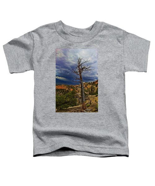 Bryce Canyon National Park Toddler T-Shirt