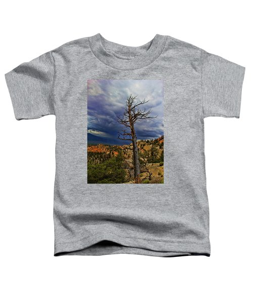 Bryce Canyon National Park Toddler T-Shirt