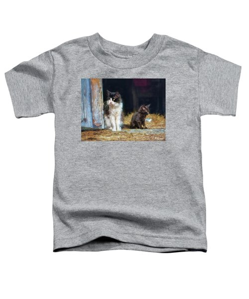 A Day In The Life Of A Barn Cat Toddler T-Shirt