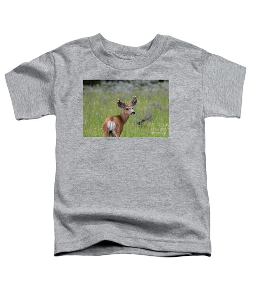 A Deer In Yellowstone National Park  Toddler T-Shirt