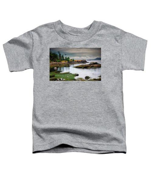 A Peaceful Bay Toddler T-Shirt