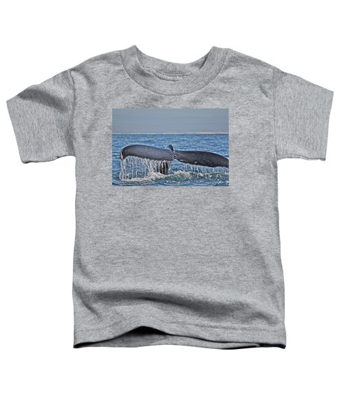 A Whale Of A Tale Toddler T-Shirt