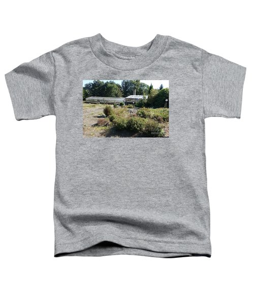 Abanoned Old Horticulture Toddler T-Shirt