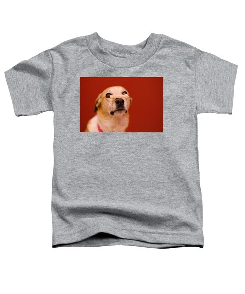 Abbie And A Milky Bone Toddler T-Shirt