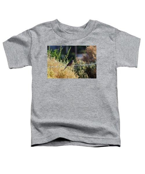 Abert's Towhee Toddler T-Shirt
