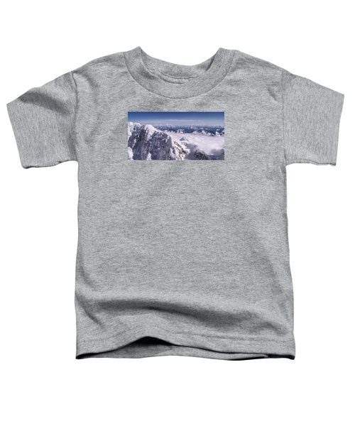 Above Denali Toddler T-Shirt