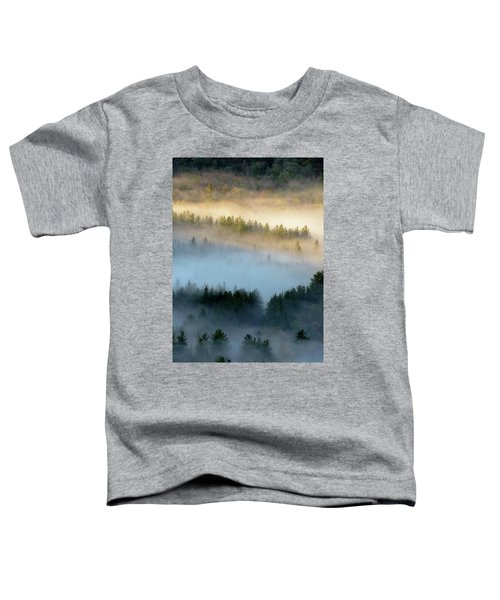 Adirondack Fog Toddler T-Shirt