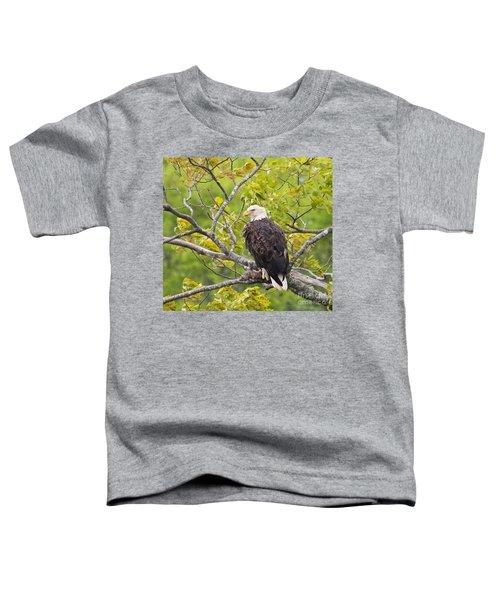 Adult Bald Eagle Toddler T-Shirt