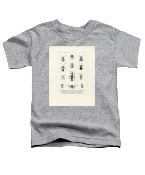 African Bugs And Insects Toddler T-Shirt