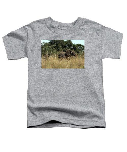 African Elephant In Tall Grass Toddler T-Shirt