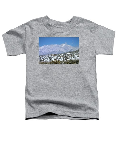After The Blizzard Toddler T-Shirt