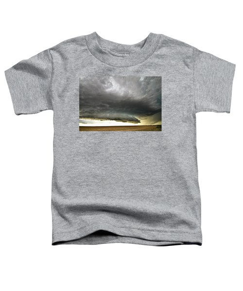 Akron Co Beast Toddler T-Shirt