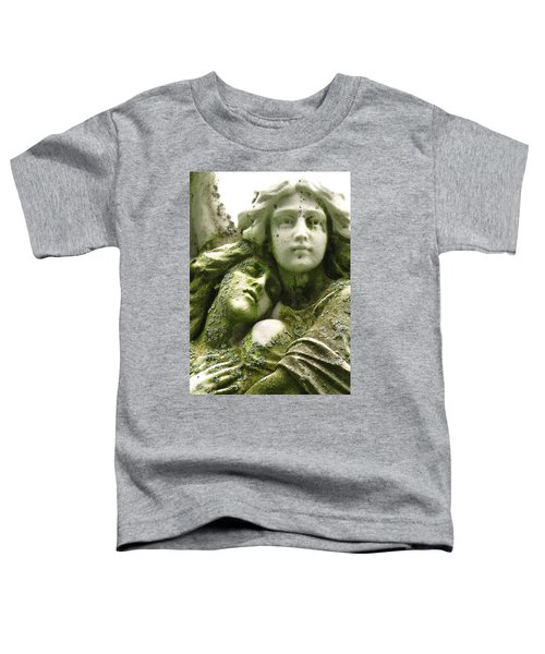 Allegorical Theory Toddler T-Shirt