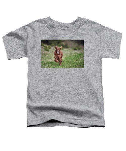 Allegro's March Toddler T-Shirt
