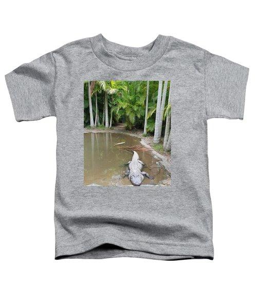 Alligator  Toddler T-Shirt