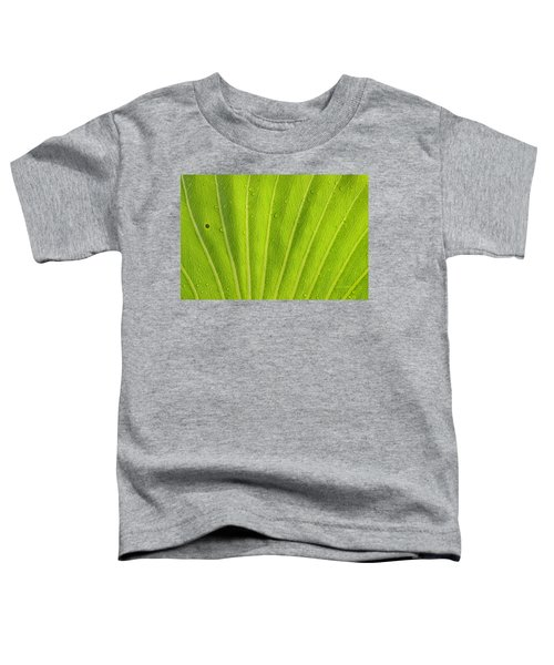 Almost Perfect Toddler T-Shirt