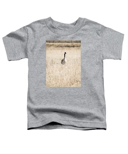 Alone In The Field Toddler T-Shirt