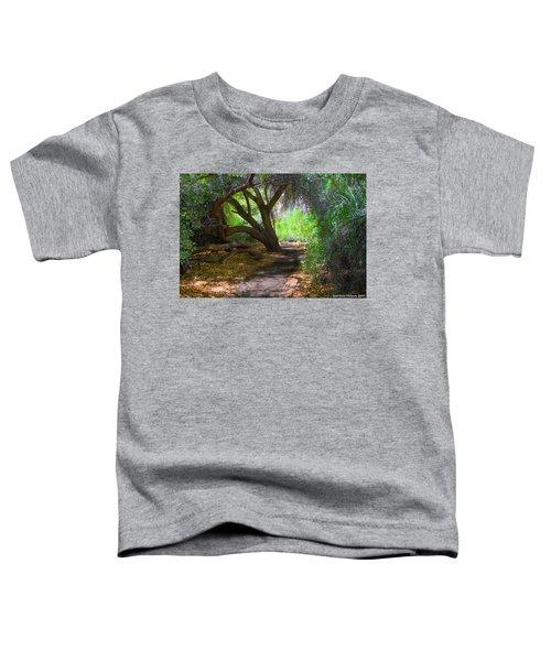 Along The Path Toddler T-Shirt