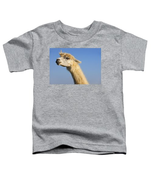 Alpaca Toddler T-Shirt