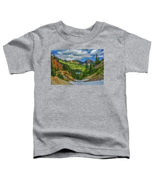 Alpine Solitude Toddler T-Shirt