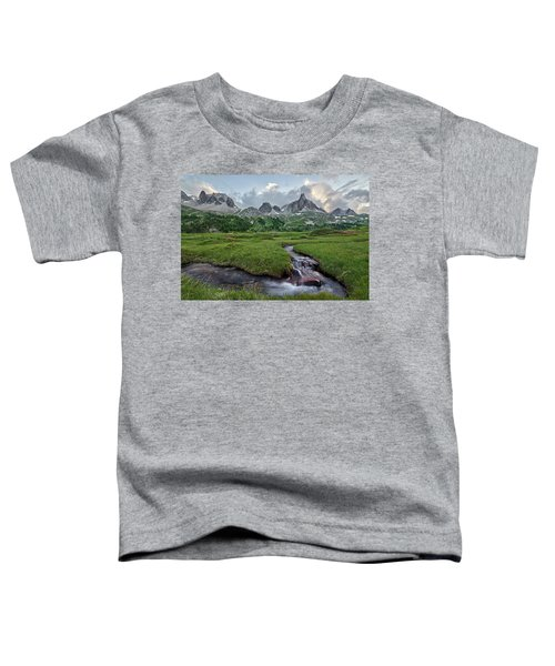 Alps In The Afternoon Toddler T-Shirt