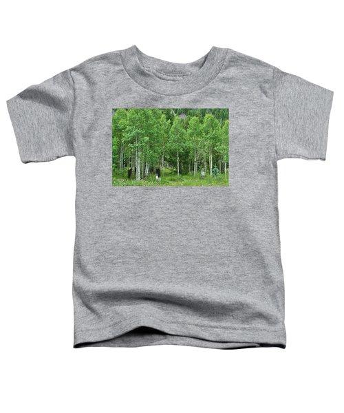 Alvarado Summer Toddler T-Shirt
