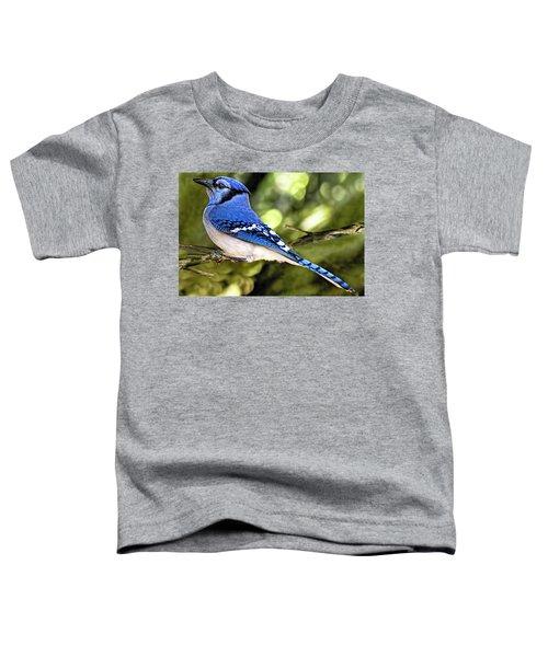 Blue Jay Bokeh Toddler T-Shirt