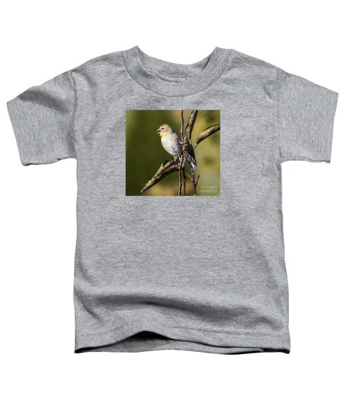 Toddler T-Shirt featuring the photograph American Goldfinch In Fall Colors  by Ricky L Jones