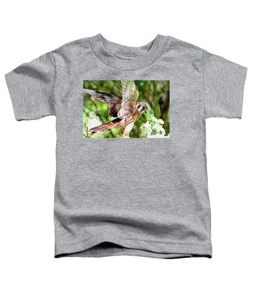 American Kestrel Hawk Toddler T-Shirt