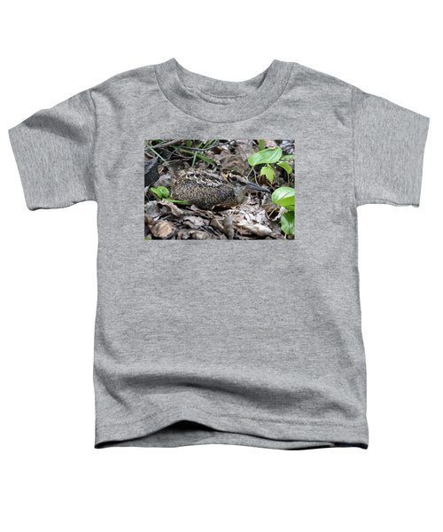 American Woodcock Chick. Toddler T-Shirt