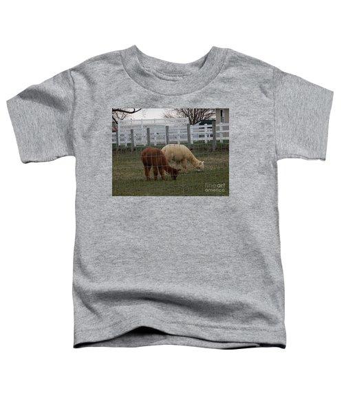 An Evening Graze Toddler T-Shirt